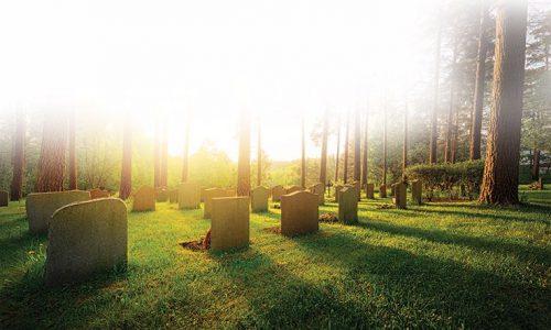 Wat zegt de Bijbel over de dood?